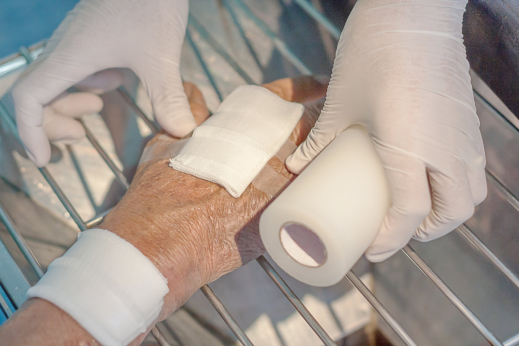 Principles of Wound Care Management